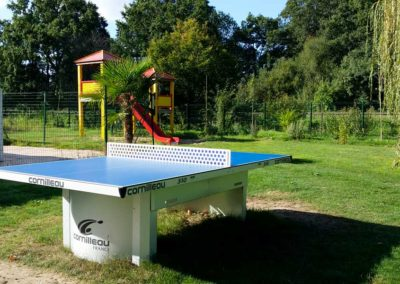 Ping-pong table and games for children